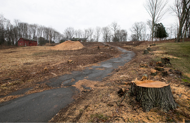 A property at 605 N. Elm St. in Wallingford, Tuesday, March 7, 2017. Town resident Pasquale DiNatale is looking to use the vacant 10-acre property for himself and family members.  | Dave Zajac, Record-Journal