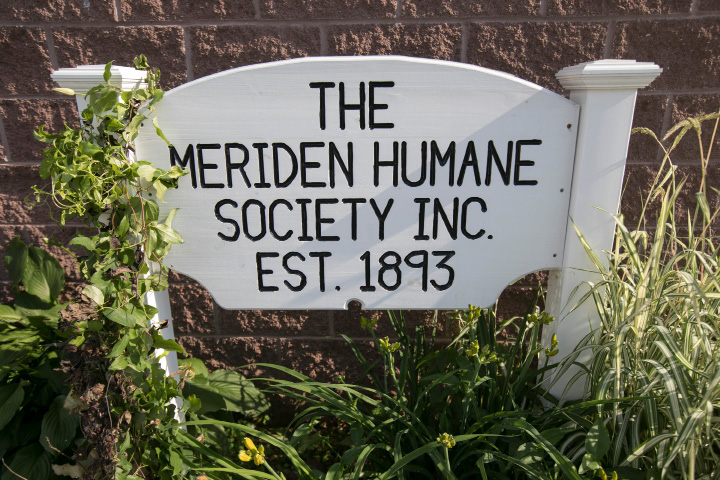 FILE PHOTO -- The Meriden Humane Society, Tuesday, June 27, 2017.   | Dave Zajac, Record-Journal