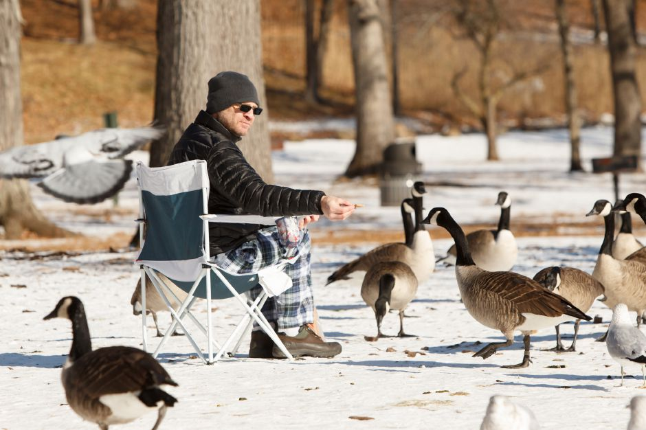Mark Bouchard of Cheshire sits in a chair feeding the birds at Hubbard Park in Meriden Wednesday December 27, 2017 | Justin Weekes / Special to the Record-Journal