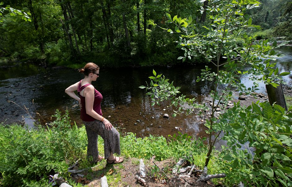 Nicole Davis, Mill River Watershed coordinator for Save the Sound, observes the Mill River in Hamden, Tuesday, July 17, 2018. Volunteers will be looking for signs of road runoff, human intervention and water contamination in the Mill River over the coming weeks as part of a river health study. Dave Zajac, Record-Journal