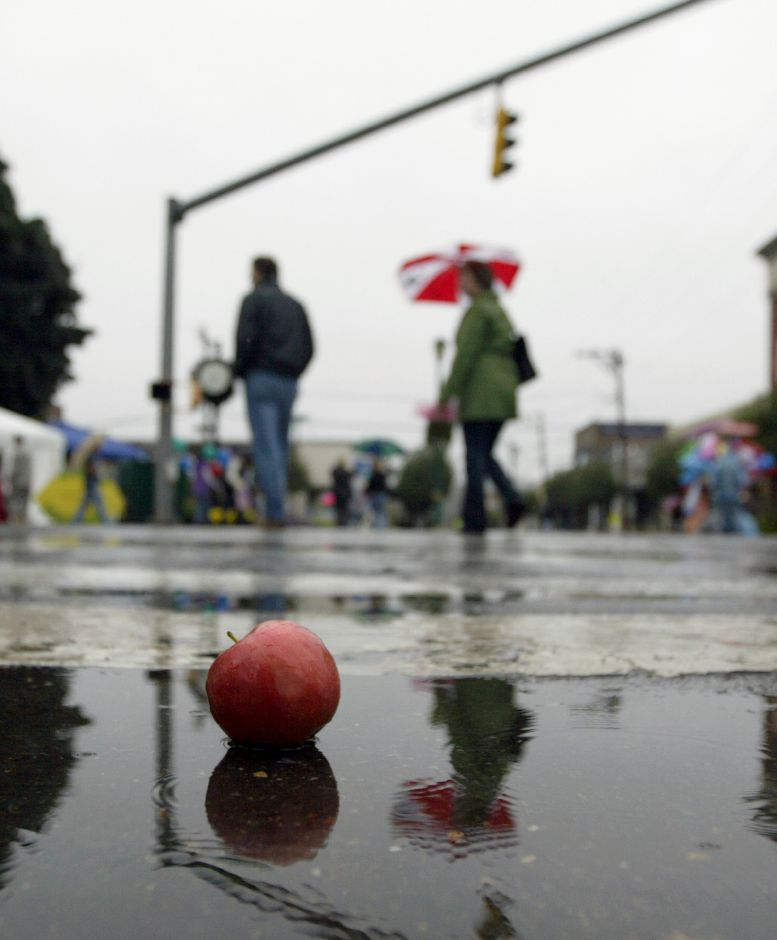 SOUTHINGTON, Connecticut - Saturday, October 3, 2009 - A lone apple is shown in a puddle on Route 10 during the soggy annual Apple Harvest Festival on Saturday. Rob Beecher / Record-Journal