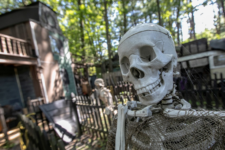 Wayne Barneschi, founder of the Trail of Terror, talks about this year