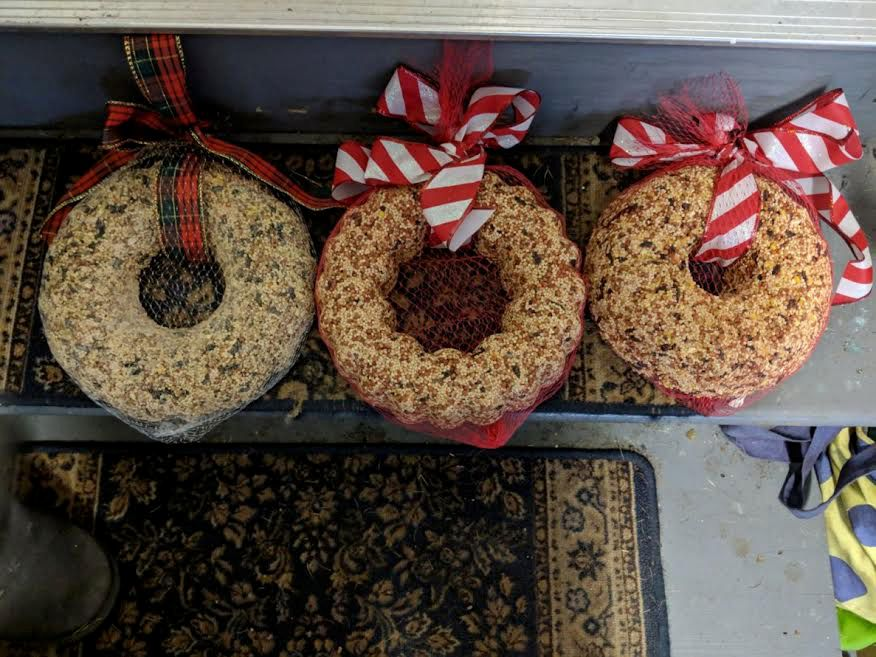 The bird seed wreaths are made of ingredients that are entirely safe and edible for birds: bird seed, karo syrup, gelatin, water and flour. Photo courtesy of Cindy Golia, North Haven Garden Club.