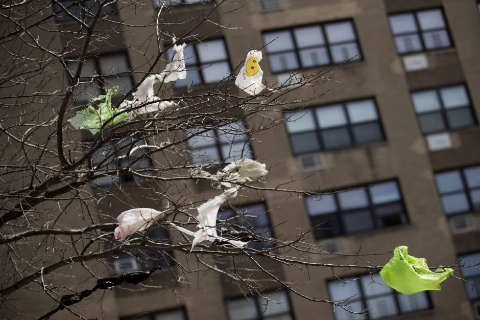 FILE- In this March 27, 2019 file photo, plastic bags are tangled in the branches of a tree in New York City