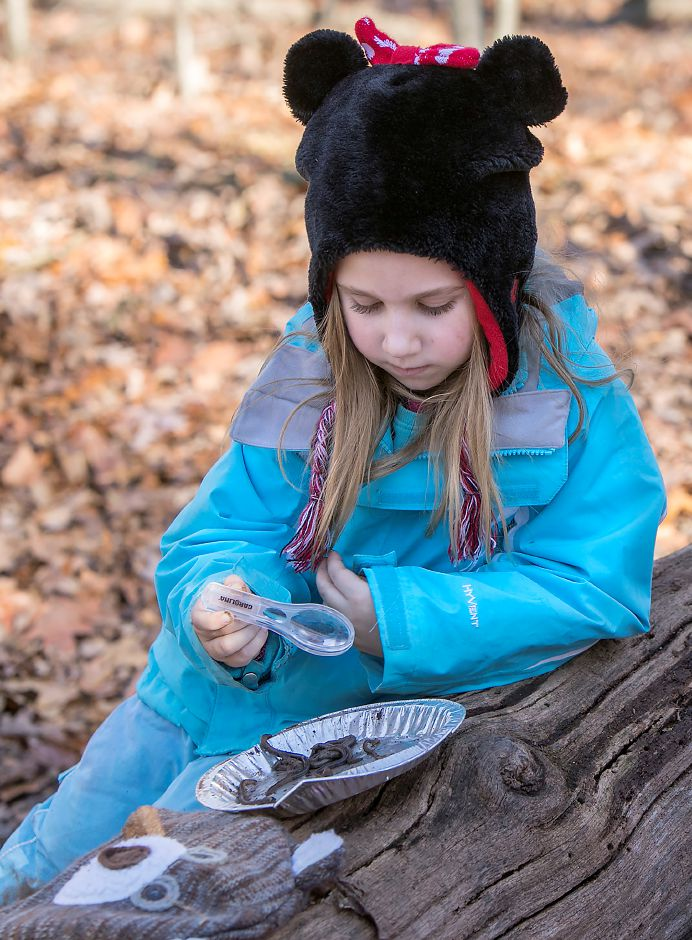 Moses Y. Beach Elementary School kindergarten student Avery Brockett, 6, views a pan of worms with a magnifying glass during the Kinderwoods program at Kohler Environmental Center in Wallingford, Thursday, Dec. 7, 2017. Dave Zajac, Record-Journal