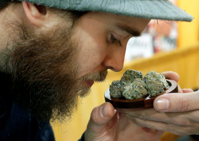 "FILE - In this In this Dec. 17 2017 file photo, Julian Clark, of Westerly, R.I., smells a strain of marijuana flowers called ""Cookie Pebbles,"" at a trade show in Worcester, Mass. Three New England states legalized recreational marijuana, but there is still no place to buy pot legally in the region. Sunday, July 1, 2018, had been the target date to open pot shops in Massachusetts, but no retail licenses have yet been awarded. Possession of small amounts of recreational marijuana becomes legal in Vermont that day, but the law has no provisions for retail sales. Pot shops aren"