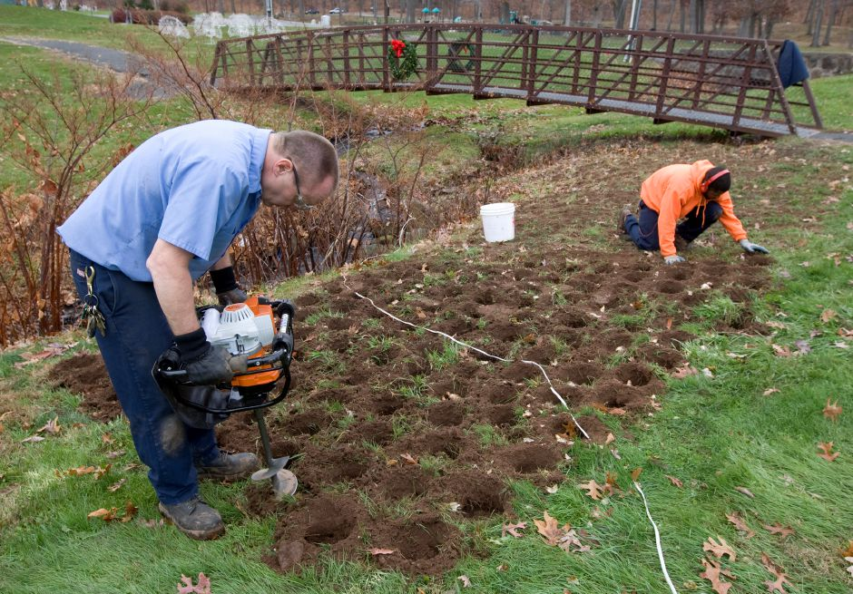 Park workers, Edward York, left, and Keith West dig holes and plant daffodil bulbs in the northeast corner of Hubbard Park in Meriden, Tuesday, November 25, 2014. Before the mechanized auger, York would dig the holes by hand with a shovel during his 28 year career with the Parks Dept. This year, Parks and Recreation Director Mark Zebora said the city has 20,000 bulbs to plant. | Dave Zajac / Record-Journal