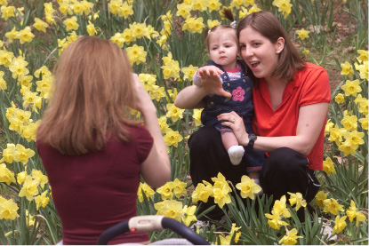 Among the daffodils, Maureen Owen holds her 9 month old daughter Julia Owen, of Meriden, while they are photographed by friend Marlene Russell, left, of Wallingford.  This is at the 25th annual Meriden Daffodil Festival Sunday April 27, 2003.