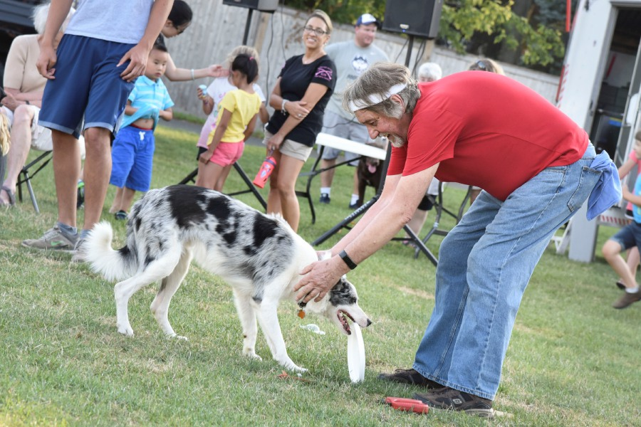 "Dog ""Deacon Blue"" brings a frisbee back to his owner and Salem resident Ed Jakubowski at a Skyhoundz competition on Thursday, August 1, 2019, at Doolittle Park in Wallingford. 