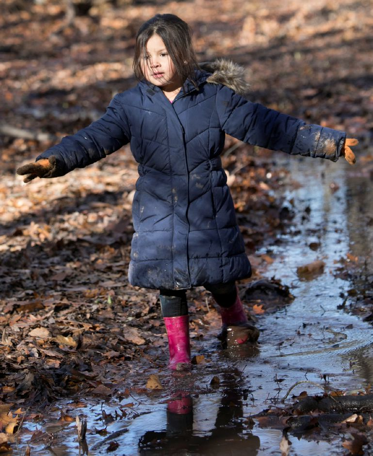 Moses Y. Beach Elementary School kindergarten student Audrina Bingle, 5, explores a stream during the Kinderwoods program at Kohler Environmental Center in Wallingford, Thursday, Dec. 7, 2017. Dave Zajac, Record-Journal