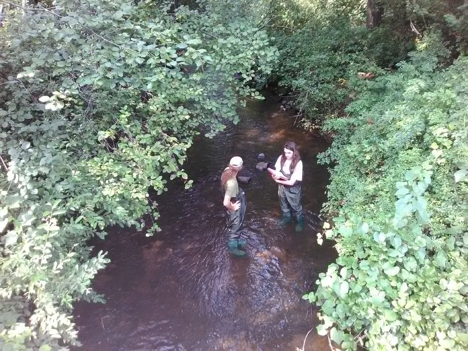 Nick Motmans, left, and Ben Motmans, right, conduct a study on the Mill River Monday in Cheshire. The study, conducted by volunteers, will support a watershed plan for the Mill River area.