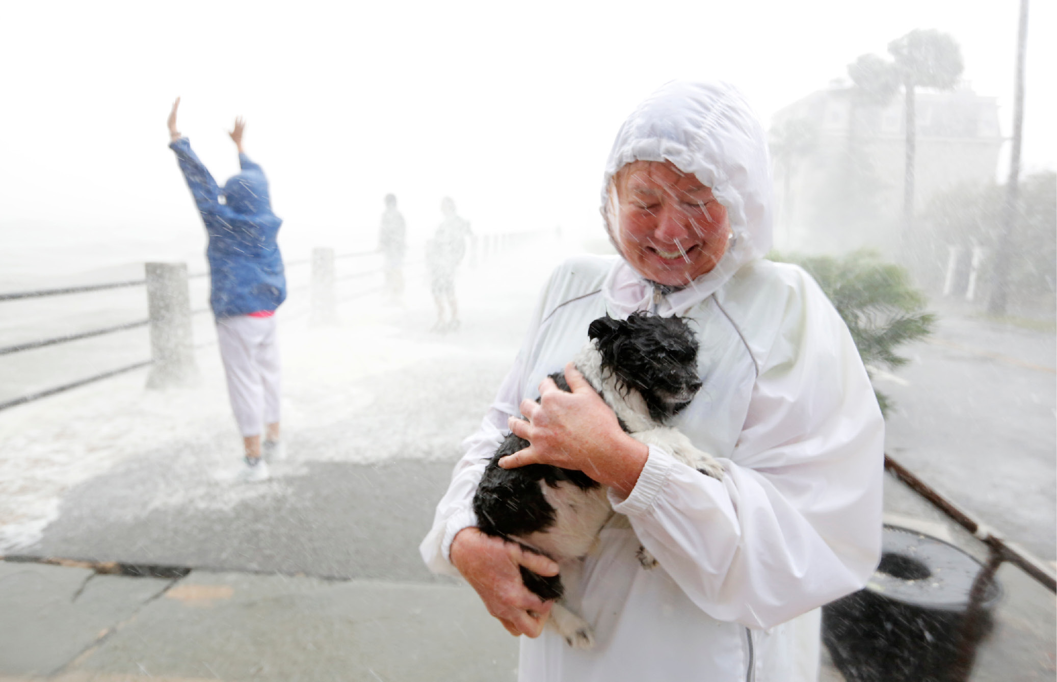 A pet owner protects her dog as pedestrians prepare for waves crashing over The Battery as Hurricane Irma hits Charleston, S.C., Monday, Sept. 11, 2017. (AP Photo/Mic Smith)