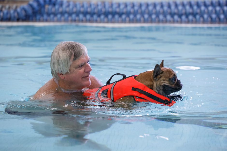 Bob Noonam helps Winston, a 1-year-old bulldog, Sunday during the YMCA Puppy Plunge at the Wallingford YMCA in Wallingford. August 26, 2018 | Justin Weekes / Special to the Record-Journal