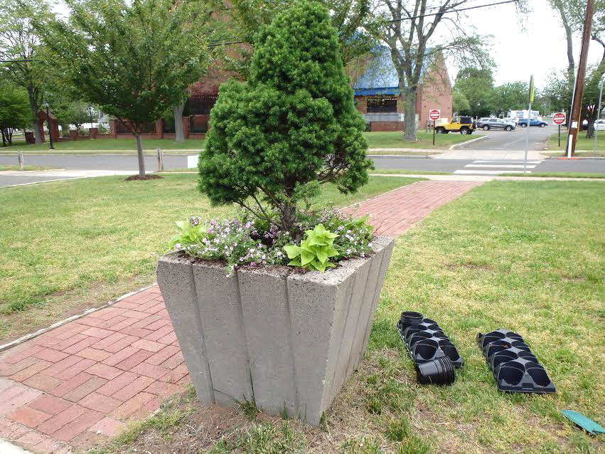 Recently Several Members Of The North Haven Garden Club Weeded The Flagpole