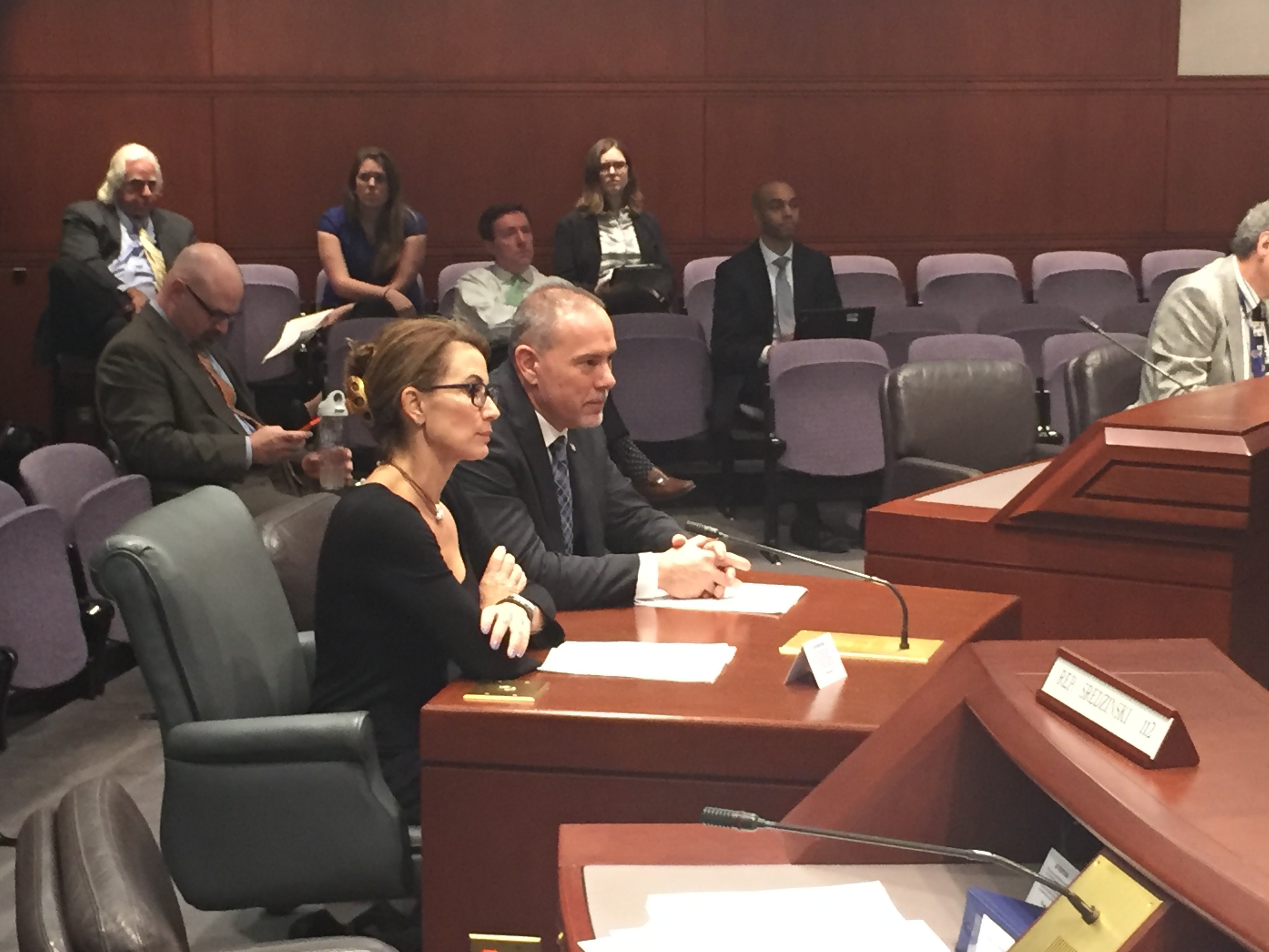 House Majority Leader Joe Aresimowicz and House Minority Leader Themis Klarides testifiy together Tuesday in support of legislation they say is the first step in attracting more students to the manufacturing workforce.  | Andrew Ragali/Record-Journal