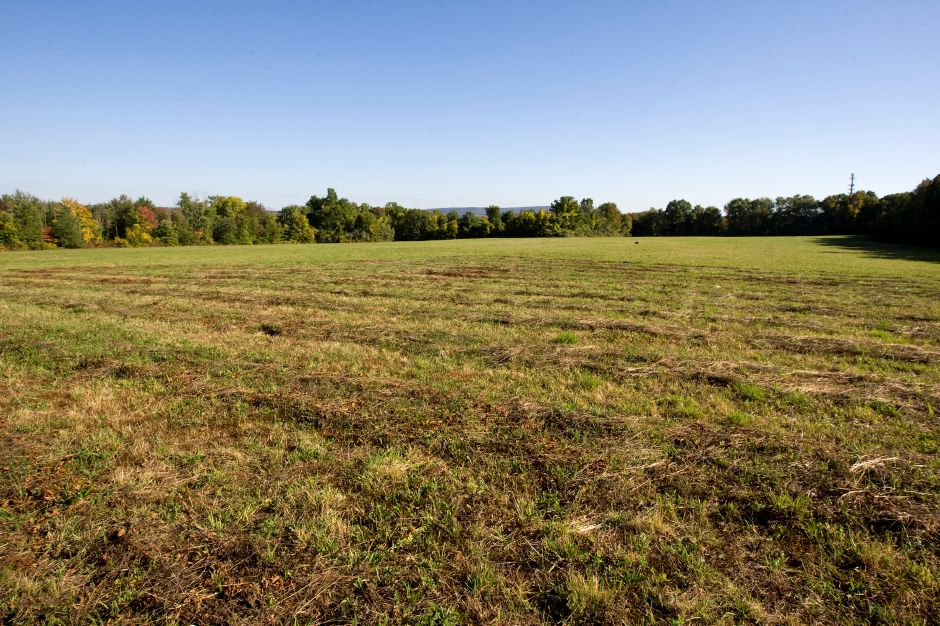 Property off West Queen St. proposed for a sports complex, Friday, September 26, 2014. The property is located across the street from the Southington Water Department and behind the tree line of the field bordering West Queen St.| Dave Zajac / Record-Journal