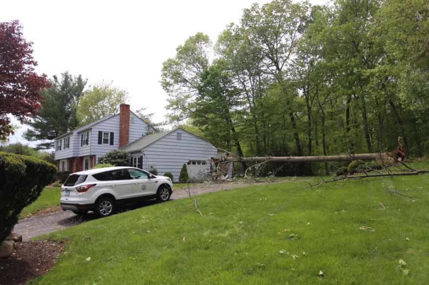 A home damaged by a tree on Higgins Road in Cheshire. | Richie Rathsack, Record-Journal