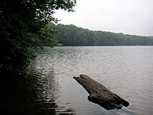 Millers Pond State Park | Courtesy of the Department of Energy and Environmental Protection