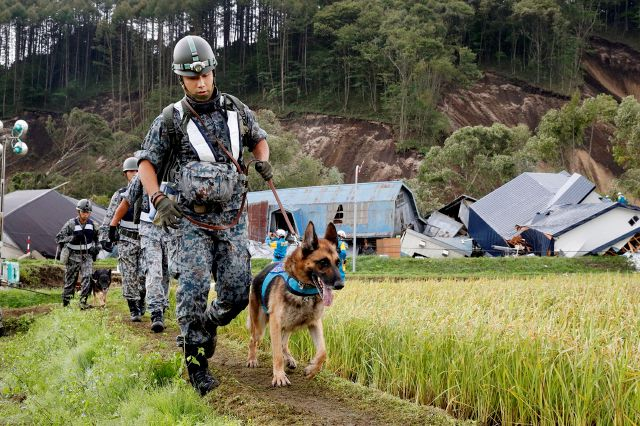 Japan Ground Self-Defense Force personnel with police dogs prepare to search for missing persons at the site of a landslide triggered by a powerful earthquake in Atsuma town, Hokkaido, northern Japan, Friday, Sept. 7, 2018. A powerful earthquake Thursday on Japan