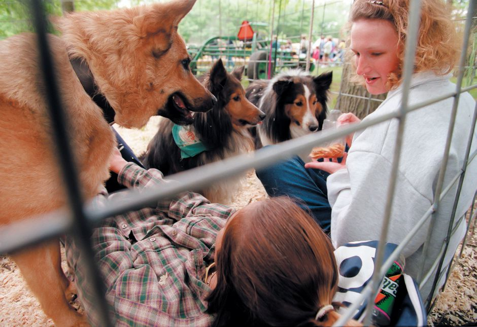 Naima Montacer, left, and Amy Maguire, right, feed crackers to and relax with some dogs on display at at the Vo-Ag fair at Lyman High School in Wallingford. The Vo-Ag students showed off many animals to area elementary school students, May 1999.