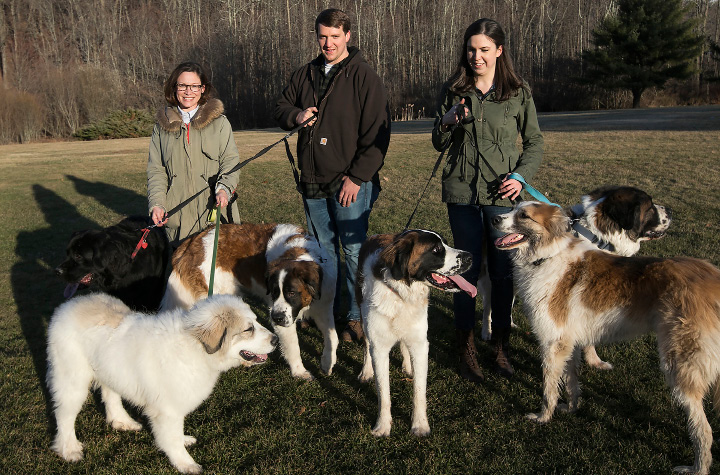 Left to right, Robie-Lyn Harnois, Greg Westman and Nikki Woodtke, all of Meriden, pause for a photo with their St. Bernards, a Newfoundland and Great Pyrenees at Giuffrida Park in Meriden, Friday, March 3, 2017.  | Dave Zajac, Record-Journal