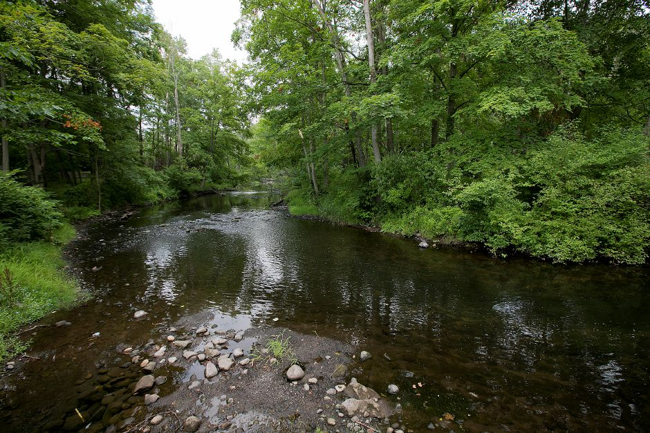 The Mill River in Hamden, Tuesday, July 17, 2018. Volunteers will be looking for signs of road runoff, human intervention and water contamination in the Mill River over the coming weeks as part of a river health study. Dave Zajac, Record-Journal