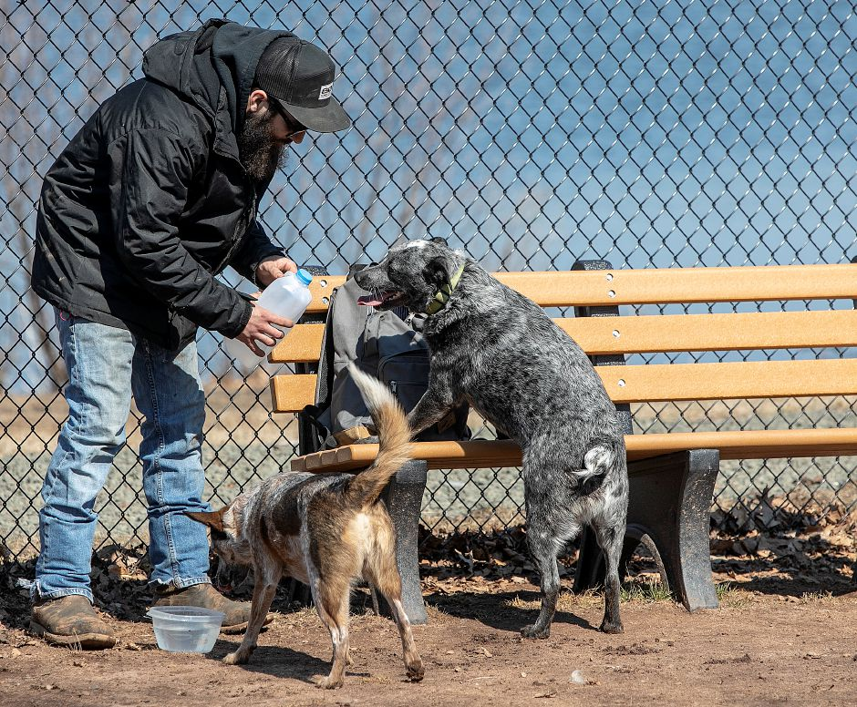 Tristan Bush, of Meriden, gives a drink to his Australian cattle dogs Merlee, 3, left, and Kramer, 2, right,  at the Meriden Dog Park at Beaver Pond in Meriden on Wednesday.
