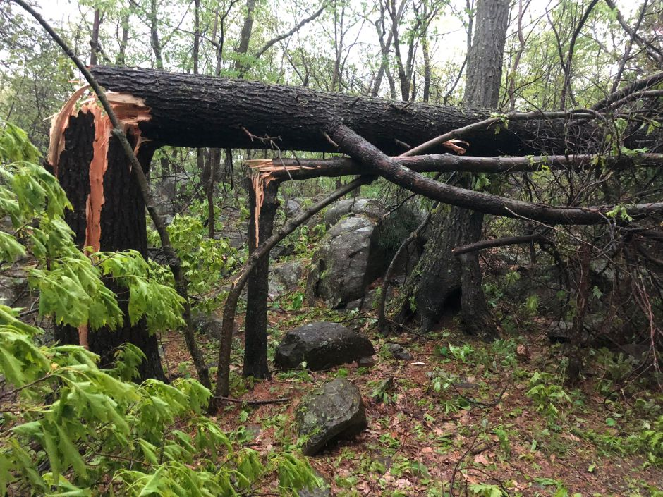 Damage at Sleeping Giant State Park after the storm.