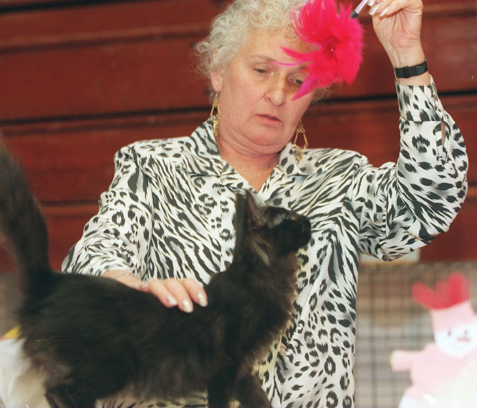 RJ file photo - Irene Brounstein of Monteville, N.J., an all-breed judge, gets the attention of a cat at the Renegades Cat Fanciers show at Derynoski School in Southington Dec. 12, 1998.
