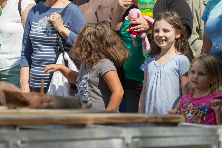 Abby Bertrand 7 left and sister Caitlyn 4 of Wallingford watch as a pig sticks his head out the the starting gate in the Show-Me Safari Racing Pigs race Sunday during the 75th Annual North Haven Fair in North Haven September 10, 2017 | Justin Weekes / For the Record-Journal