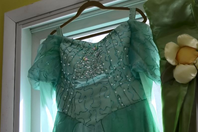 A character dress used for character parties and events hosted by Jenna Morin, owner of Face Candy Art and Entertainment, Meriden. |Ashley Kus, Record-Journal