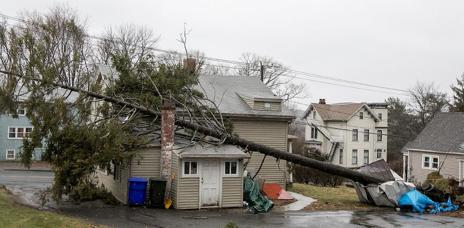 A nor'easter brought more than an inch of rain, 25 mph sustained winds and 50 mph gusts to the area on March 2, knocking out power and bringing trees down onto roads and homes.