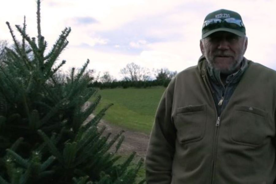 Warren Herzig talks about Christmas Tree picking at Herzig Family Tree Farm in Durham. Photos by Ashley Kus, Record-Journal