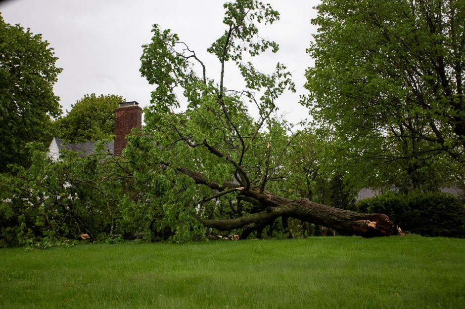 A downed tree in a yard on Baldwin Avenue in Meriden May 15, 2018 after a strong storm passed through in the early evening. | Richie Rathsack, Record-Journal