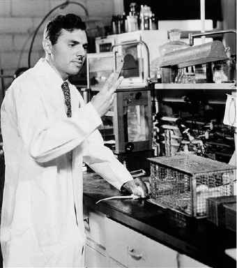 Dr. Harvey M. Patt of Argonne National Laboratory's division of biology shown Sept. 1, 1949, as he prepares to inject rats with Cysteine, an inexpensive chemical, with protects the majority of the animals from death due to exposure to radioactivity. Dr. Patt and associates are engaged in studies of the nature of radiation sickness and its treatment. (AP Photo)