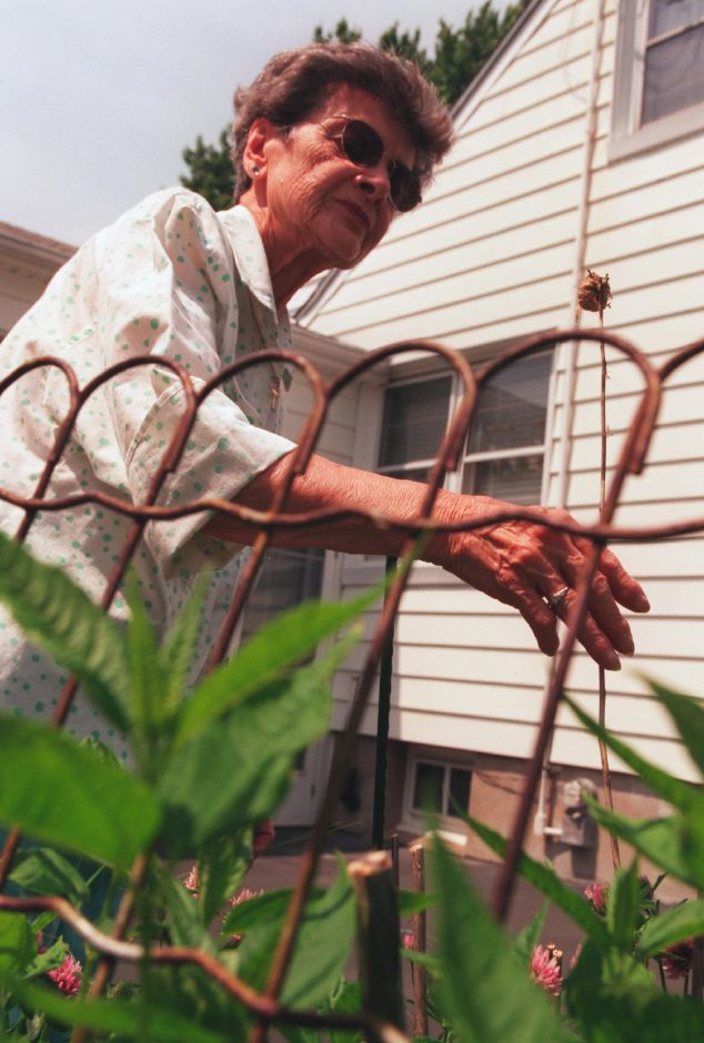 Jo Brill of Wallingford, looks at a little round egg case called an ootheca in front of her home on Welcome Street. The egg case for the praying mantids is perched on top of a long flower stem, June 1999.