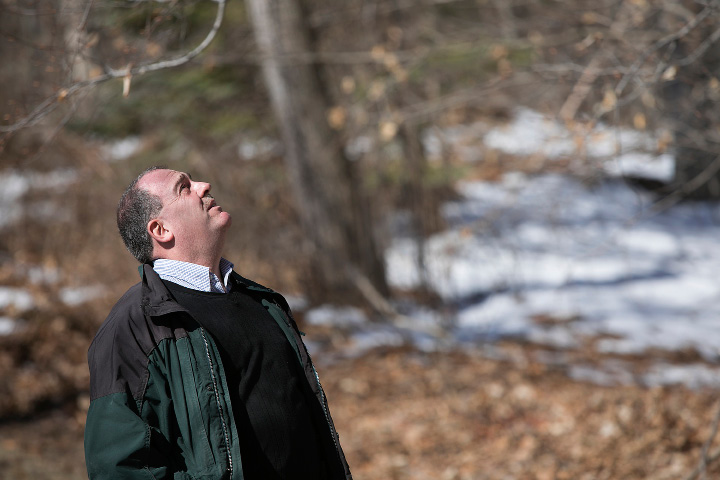 Christopher Martin, director of forestry, CT DEEP, looks for gypsy moth egg masses on trees after a presentation cautioning residents to anticipate a heavy presence of the caterpillars this spring at the Connecticut Forest and Park Association in Rockfall, Thursday morning, March 23, 2017. | Dave Zajac, Record-Journal