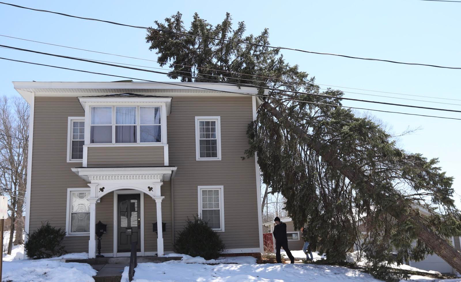 A tree crashed into a house at 42 Vermont Ave. in Southington Wednesday. | Dave Zajac, Record-Journal