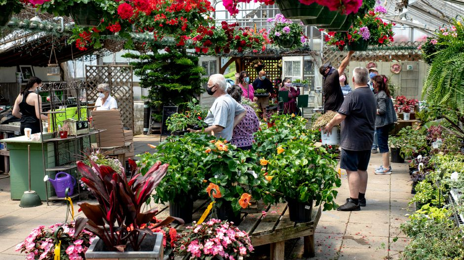 Tower Farms of Cheshire saw a spike in activity on the weekend of May 17, 2020 as warm weather brought locals out of quarantine to get a start on decorating their gardens and homes. | Devin Leith-Yessian/Record-Journal