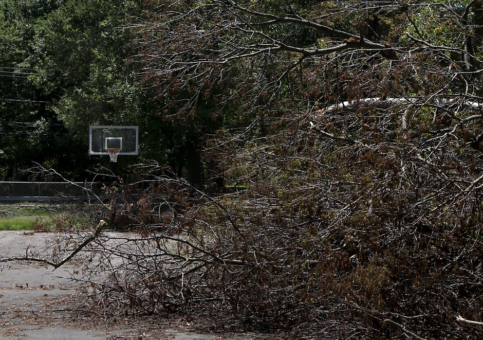 Fallen tree limbs on the basketball court at Mischelle & Kristine Pire Memorial Park on Birch Drive in Wallingford, Tuesday, June 12, 2018. Teams from the Federal Emergency Management Agency visited Wallingford Tuesday morning to survey the damage from the May 15 storm. Dave Zajac, Record-Journal