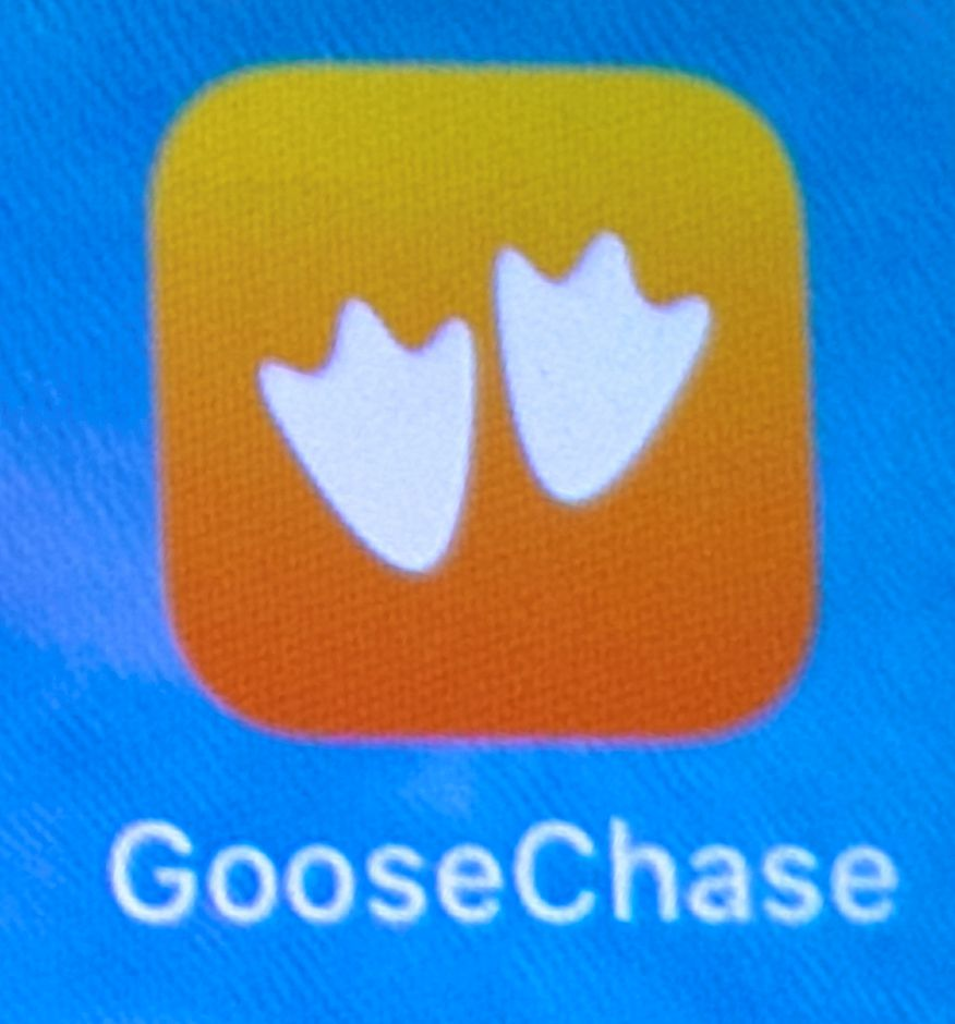 The GooseChase app seen on a smartphone, Wed., June 19, 2019. A team of school district staff are tackling the problem of summer learning loss by creating family scavenger hunts, coordinated through a phone app. Dave Zajac, Record-Journal