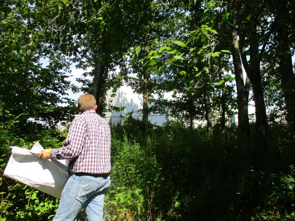 Lucas Hellerich, project engineer at Woodard & Curran, performs a site investigation of the wetlands behind 21 Toelles Road in Wallingford with town planning officials on Aug. 11. Photo courtesy of Erin O'Hare, Wallingford environmental planner