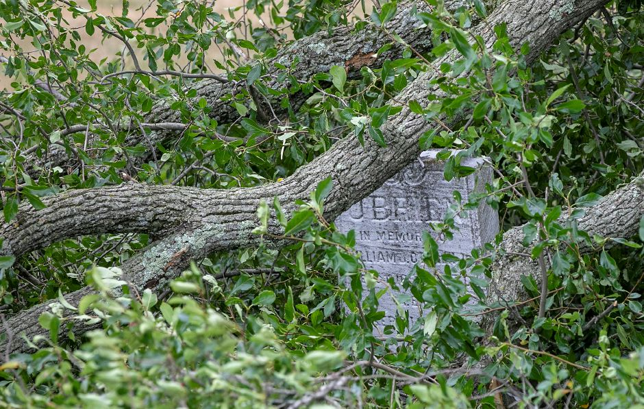 Tree limbs rest over a memorial at Sacred Heart Cemetery in Meriden during tropical storm Isaias, Tues., Aug. 4, 2020. Dave Zajac, Record-Journal