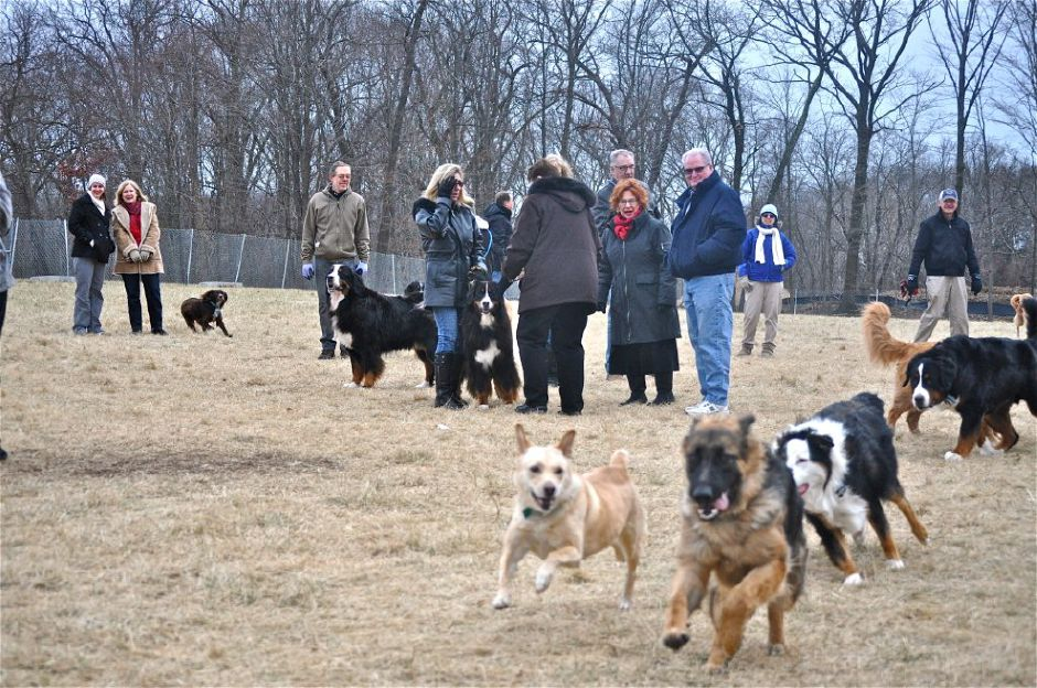 File photo - Cheshire Dog Park