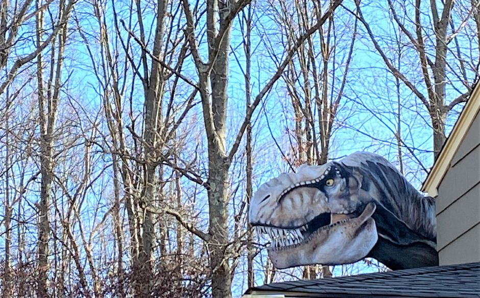 Dan Krawitz brings a Jurassic Park vibe to the roofline of his Cheshire home with this T-Rex sculpture. Joy VanderLek, special to the Record-Journal.