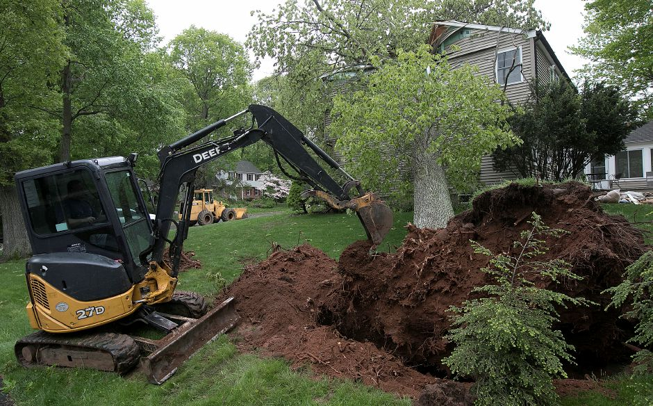 A worker operates a mini excavator as part of efforts to remove a large tree that fell on a home at 125 Bellamy Rd. during Tuesday