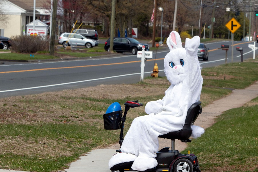 The Easter Bunny sits on a scooter at the intersection of Highland Ave. and Eastgate Dr. in Cheshire sends some cheer as he waves to passing cars Thursday afternoon. Aaron Flaum, Record-Journal