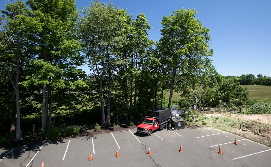 Crews work to remove trees as part of a project to improve parking at Cava, 1615 West St. Southington, Mon., Jun. 8, 2020. Dave Zajac, Record-Journal