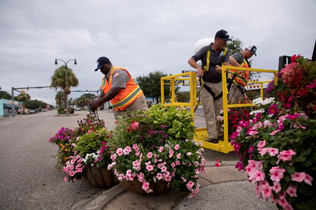City of North Myrtle Beach workers removes hanging plans on Main Street ahead of Tropical Storm Isais. The storm is moving up the east coast and is expected to make landfall near Myrtle Beach, S.C., on Monday, Aug. 3, 2020. (Jason Lee/The Sun News via AP)