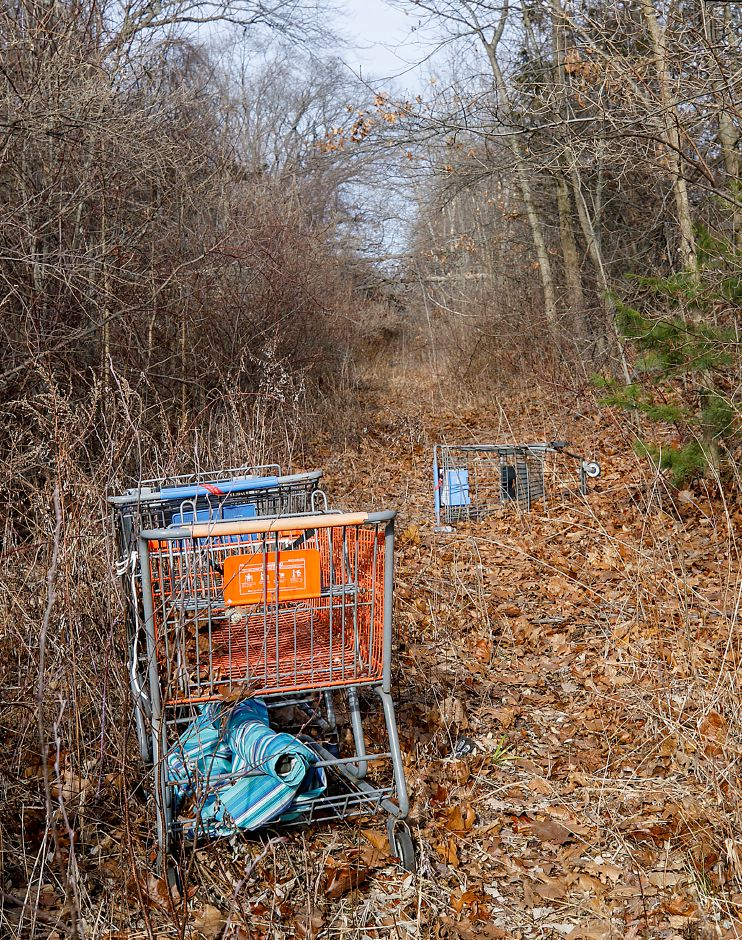 At right: Discarded shopping carts are seen here on Wednesday  on the future path of the Farmington Canal Heritage Trail at Lazy Lane in Southington.